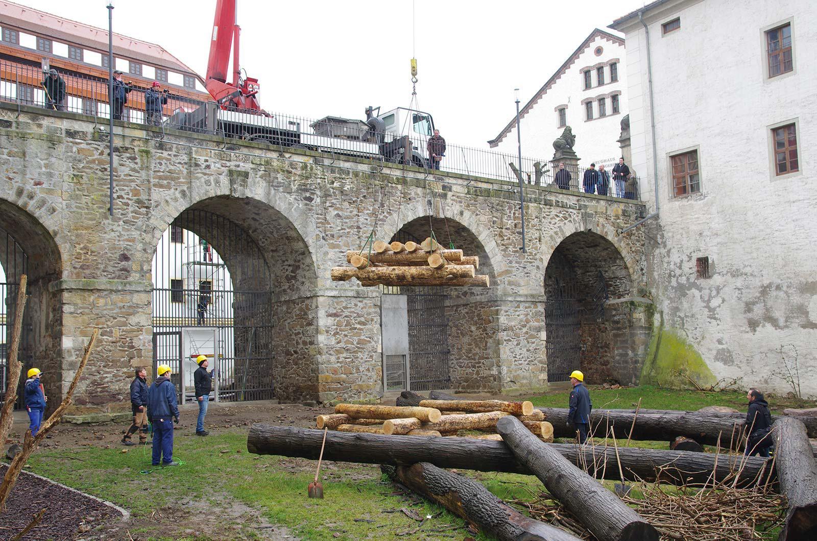 Klettergerüst Burg : Neues klettergerüst für die torgauer bären